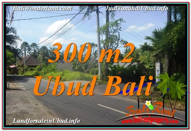 FOR SALE Beautiful PROPERTY LAND IN Sentral / Ubud Center TJUB646