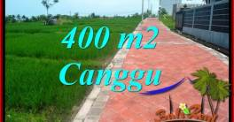 FOR SALE 400 m2 LAND IN Canggu Pererenan BALI TJCG219