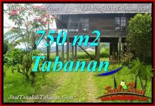 Affordable PROPERTY Tabanan Bedugul BALI 750 m2 LAND FOR SALE TJTB370