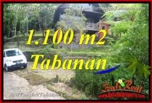 Exotic PROPERTY 1,100 m2 LAND FOR SALE IN TABANAN Bedugul BALI TJTB371