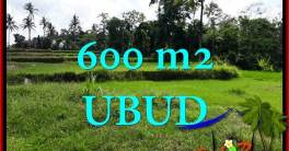 Magnificent PROPERTY LAND SALE IN UBUD TJUB657