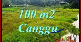 Affordable PROPERTY CANGGU LAND FOR SALE TJCG227