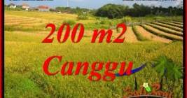 Beautiful PROPERTY LAND FOR SALE IN CANGGU TJCG228