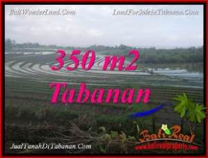 FOR SALE Magnificent PROPERTY 350 m2 LAND IN TABANAN SELEMADEG BALI TJTB386