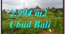 LAND FOR SALE IN UBUD TJUB672