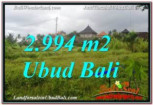 FOR SALE Exotic 2,994 m2 LAND IN UBUD BALI TJUB672