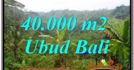 Exotic PROPERTY 40,000 m2 LAND SALE IN UBUD PAYANGAN BALI TJUB679