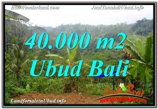 Magnificent 40,000 m2 LAND SALE IN UBUD PAYANGAN BALI TJUB679