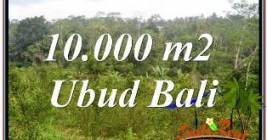 Affordable 10,500 m2 LAND IN UBUD BALI FOR SALE TJUB681