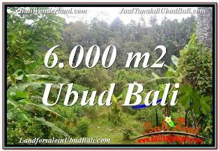 Magnificent PROPERTY UBUD TEGALALANG 6,000 m2 LAND FOR SALE TJUB682