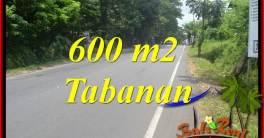 FOR sale Affordable Property 600 m2 Land in Tabanan Bali TJTB401