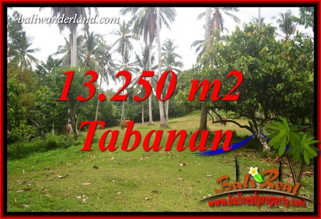 Beautiful Property 13,250 m2 Land sale in Tabanan Selemadeg Bali TJTB403