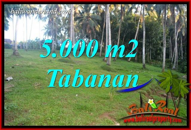 Exotic Property 5,000 m2 Land sale in Tabanan Selemadeg TJTB408