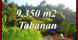 Magnificent Property Tabanan Selemadeg 9,350 m2 Land for sale TJTB409