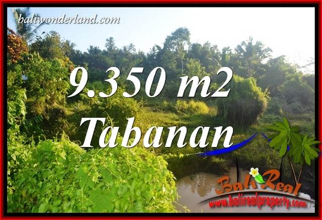 Exotic Property 9,350 m2 Land in Tabanan Selemadeg Bali for sale TJTB409
