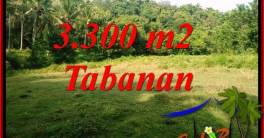 3,300 m2 Land in Tabanan Bali for sale TJTB413