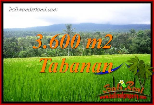 FOR sale Exotic 3,600 m2 Land in Tabanan Bali TJTB415