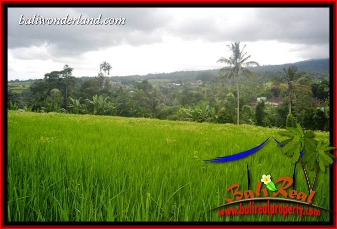 Land for sale in Bali, Land in Bali for sale, Property for sale in Bali, Property in Bali for sale, Property investment in Bali, Bali Property investment