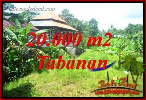 FOR sale Beautiful Property 20,000 m2 Land in Tabanan Kota TJTB418