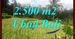 Beautiful Ubud Tegalalang 2,500 m2 Land for sale TJUB690