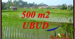 Affordable Ubud Bali 500 m2 Land for sale TJUB708