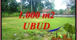 Beautiful Property Ubud Pejeng Bali 1,000 m2 Land for sale TJUB728