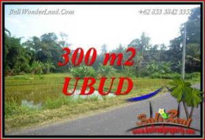 Magnificent Sentral Ubud 300 m2 Land for sale TJUB730