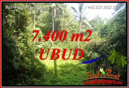 FOR sale Magnificent 7,700 m2 Land in Ubud Bali TJUB734