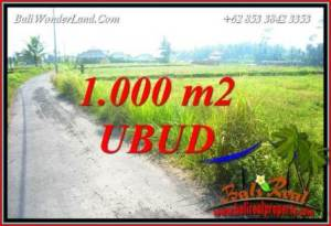FOR sale Beautiful Property 1,000 m2 Land in Ubud Pejeng TJUB739