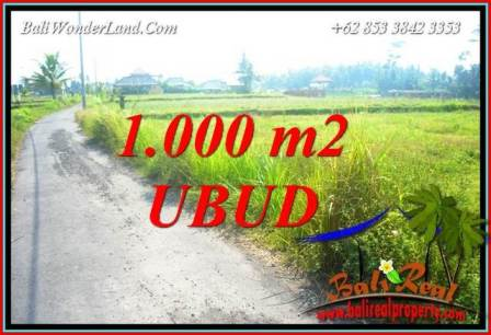 Magnificent Property 1,000 m2 Land sale in Ubud Pejeng Bali TJUB739