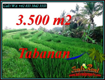Beautiful PROPERTY 3,500 m2 LAND IN TABANAN FOR SALE TJTB500
