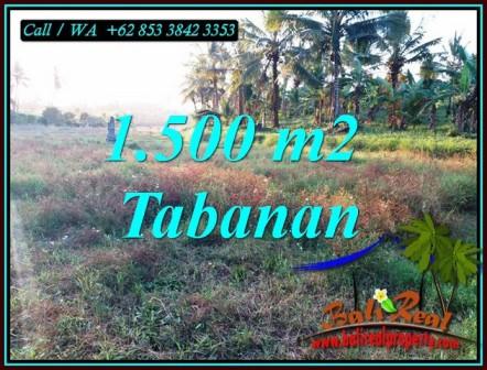 FOR SALE Affordable 1,500 m2 LAND IN SELEMADEG BARAT TJTB497