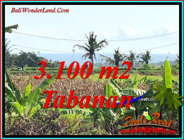 FOR SALE Magnificent LAND IN TABANAN BALI TJTB485