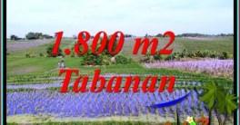 Affordable 1,800 m2 LAND SALE IN KERAMBITAN TABANAN BALI TJTB491