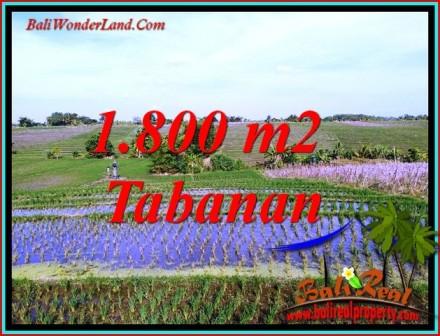 KERAMBITAN TABANAN BALI 1,800 m2 LAND FOR SALE TJTB491