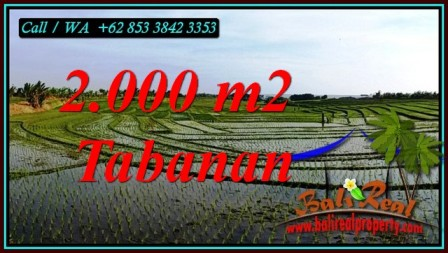 Beautiful KERAMBITAN TABANAN BALI 2,000 m2 LAND FOR SALE TJTB493