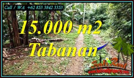 Beautiful PROPERTY 15,000 m2 LAND SALE IN TABANAN TJTB469