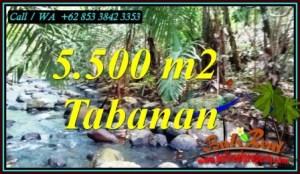 Beautiful PROPERTY TABANAN 5,500 m2 LAND FOR SALE TJTB470