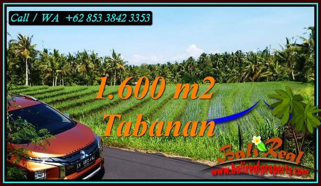 LAND SALE IN TABANAN BALI TJTB471