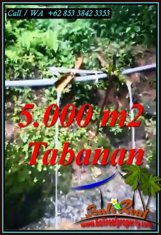 Exotic PROPERTY TABANAN 5,000 m2 LAND FOR SALE TJTB476