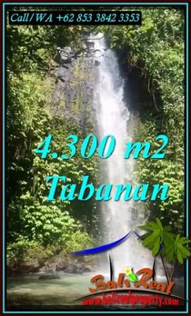 Beautiful PROPERTY LAND IN SELEMADEG BARAT BALI FOR SALE TJTB480