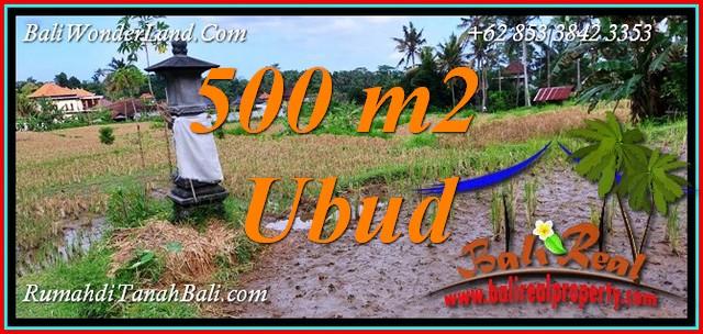 FOR SALE LAND in UBUD BALI TJUB812