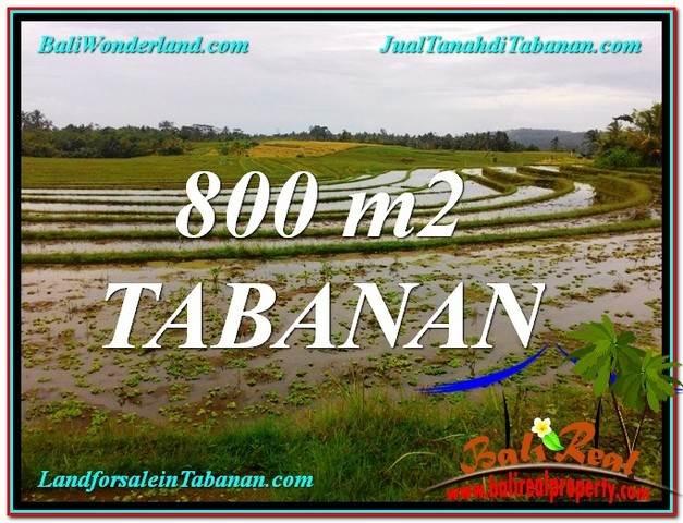800 m2 LAND IN TABANAN FOR SALE TJTB324