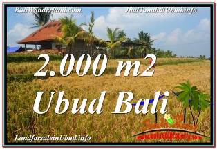 Magnificent PROPERTY 2,000 m2 LAND IN UBUD TEGALALANG FOR SALE TJUB669