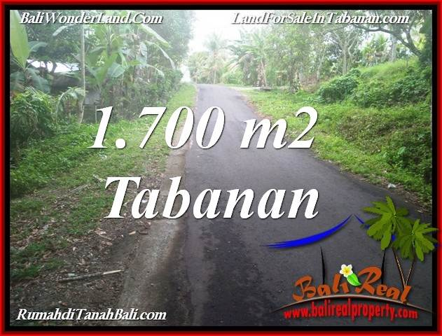 FOR SALE Magnificent 1,700 m2 LAND IN TABANAN SELEMADEG BALI TJTB385