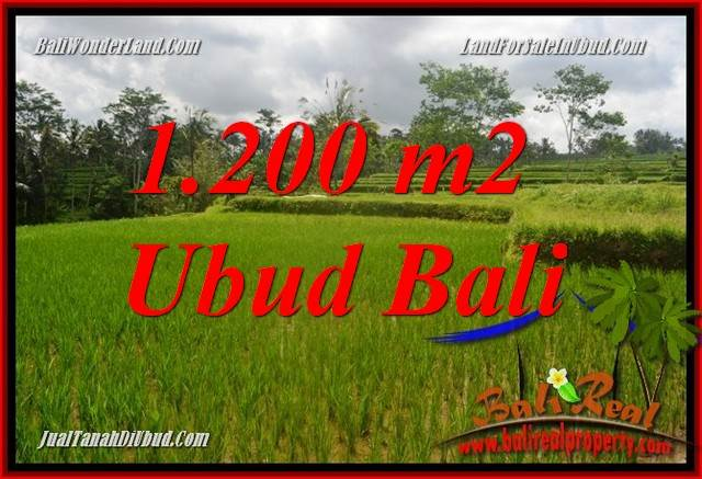 Magnificent 1,200 m2 Land in Ubud Tegalalang for sale TJUB693