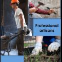 Professional Artisans Partners