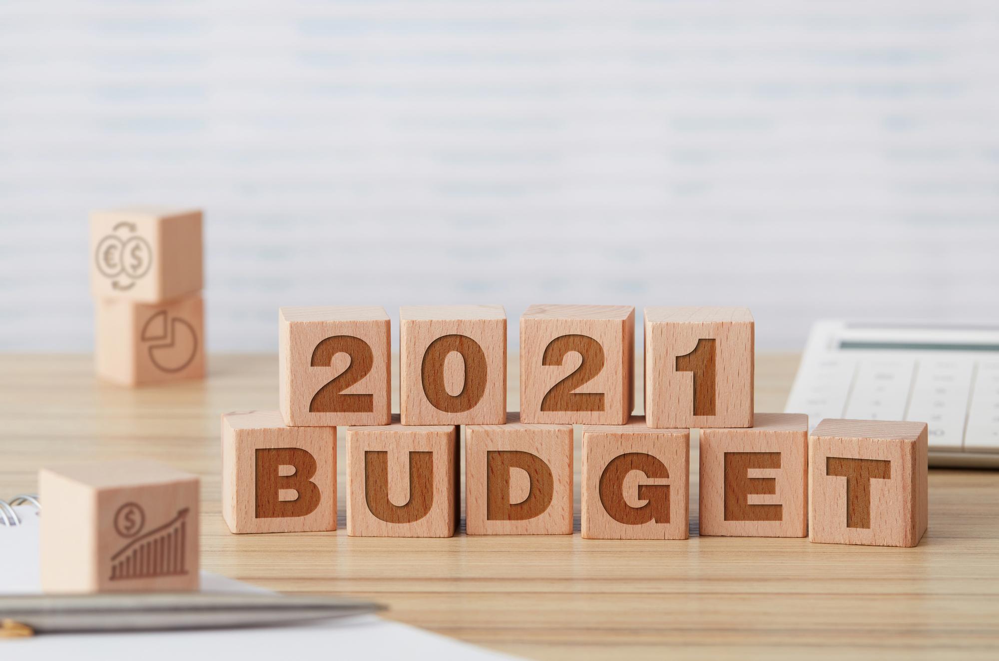 budget 2021 - photo #5