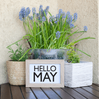 flower pot with a month of May sign