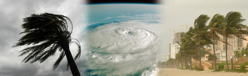 Hurricane-Shutters